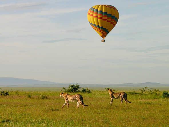 Maasai Mara Balloon Safaris